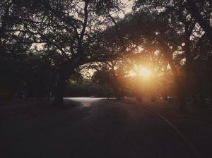 Brackenridge Park, San Antonio, TX.